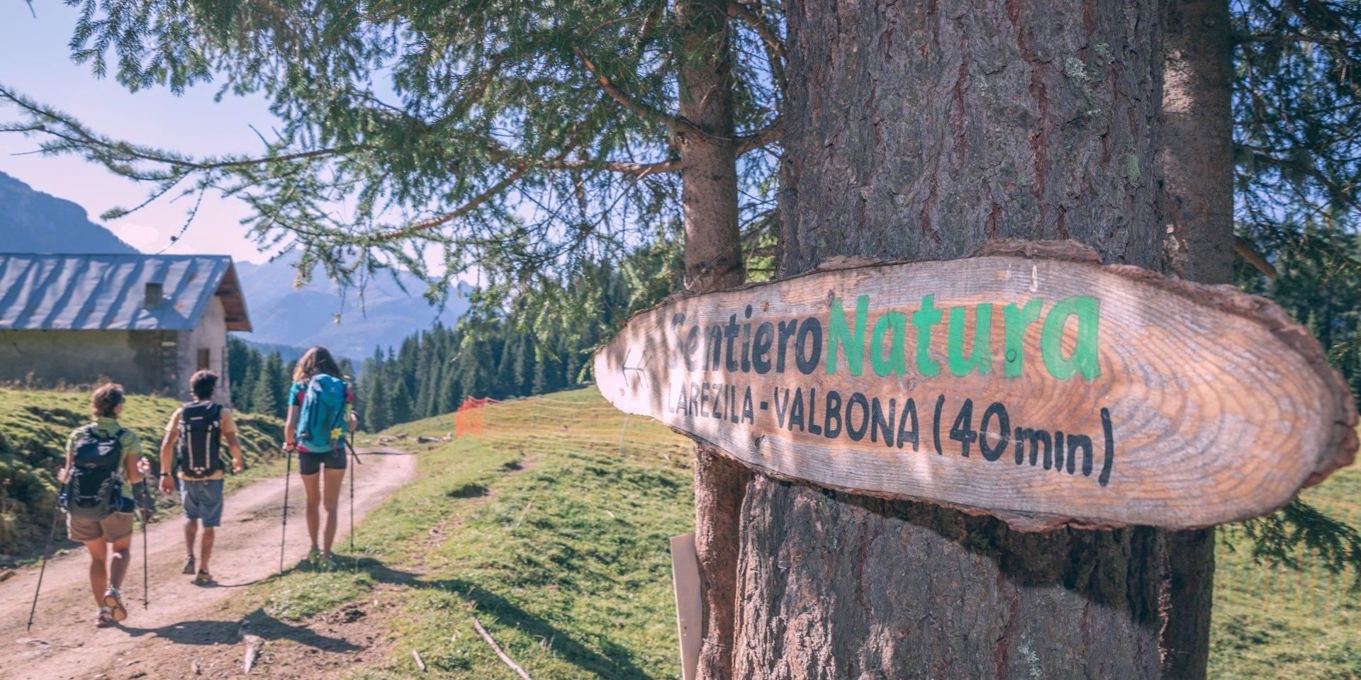 Trekking del Benessere – Escursione panoramica e wellness nella natura all'Alpe di Lusia