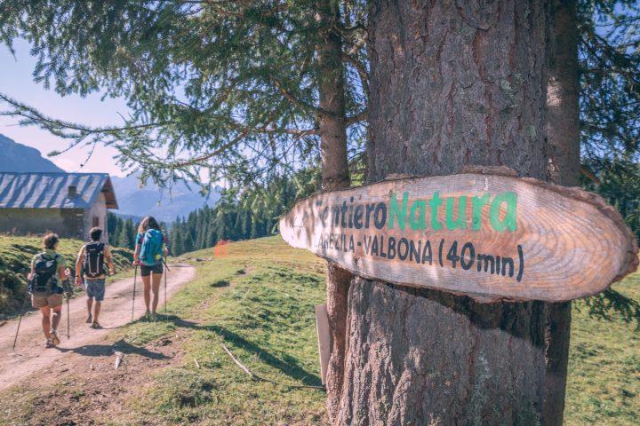 Escursione del Benessere all'alpe di Lusia