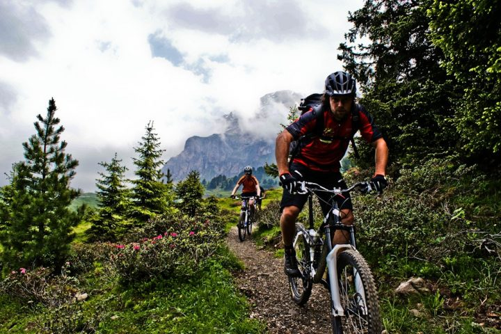 Easy enduro tour in park o su single trail