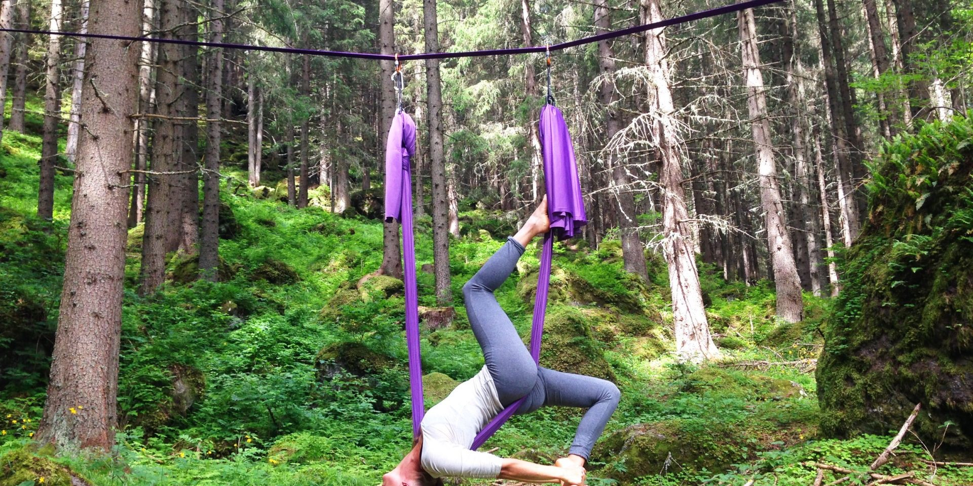 Tree yoga adventure