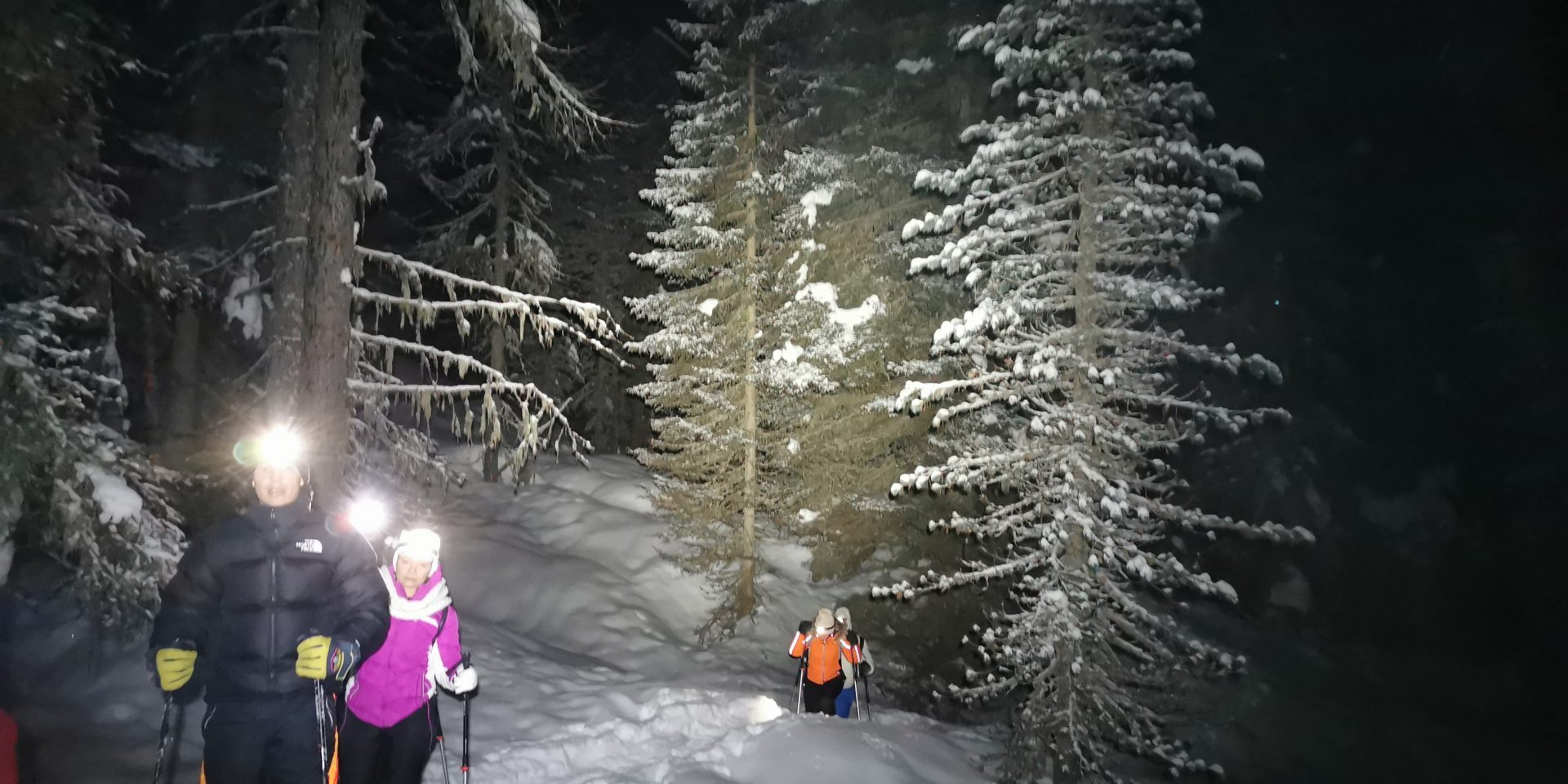 New Year night snowshoes excursion!