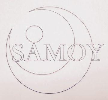 Logo Tania Detomas – Yoga