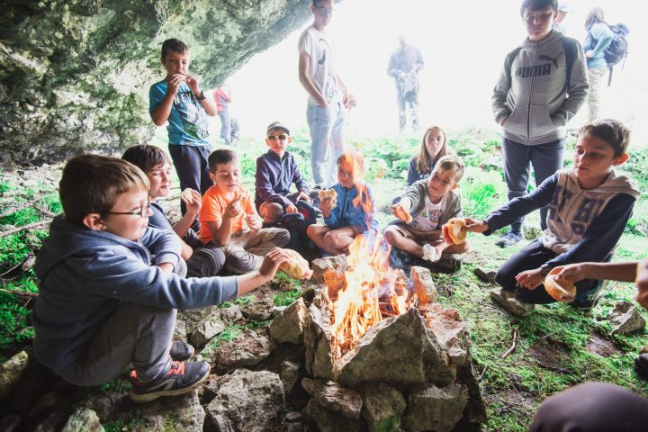 Survivor – survival and exploration school