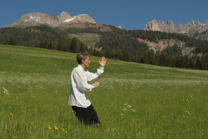 Tai chi fu style outside and in the gym