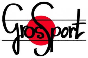 Logo Gross sport